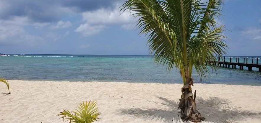 Paradise Beach - Cozumel, Mexico