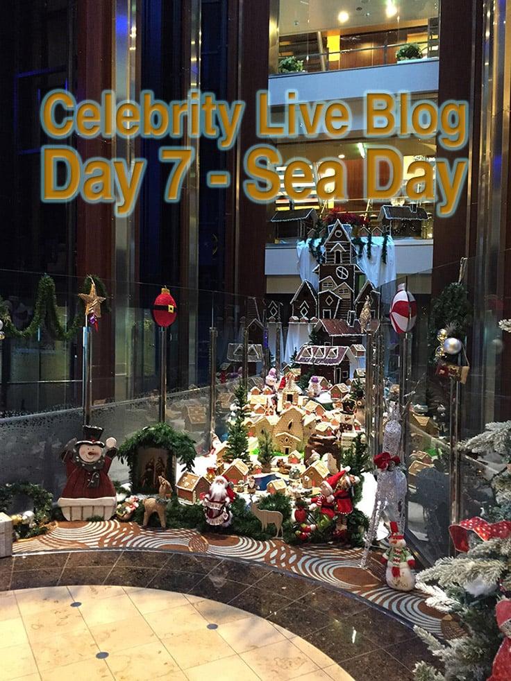 Celebrity Reflection Christmas Display
