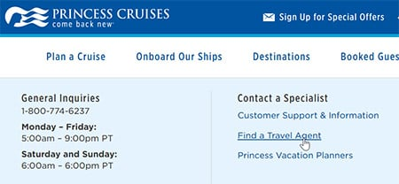 Should I use a travel agent or book directly with a cruise