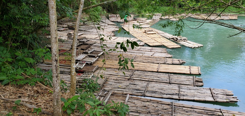 Bamboo Rafts at the Ready on the Martha Brae