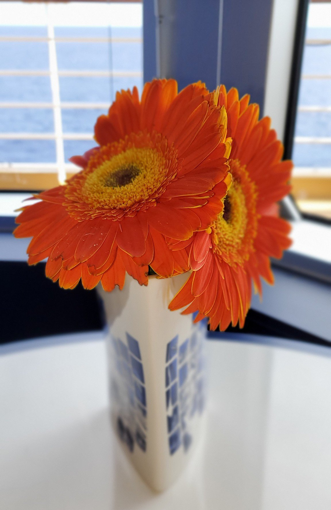 Colorful Touches in Grand Dutch Cafe on Nieuw Statendam