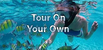 Take excursions on your own with NCL